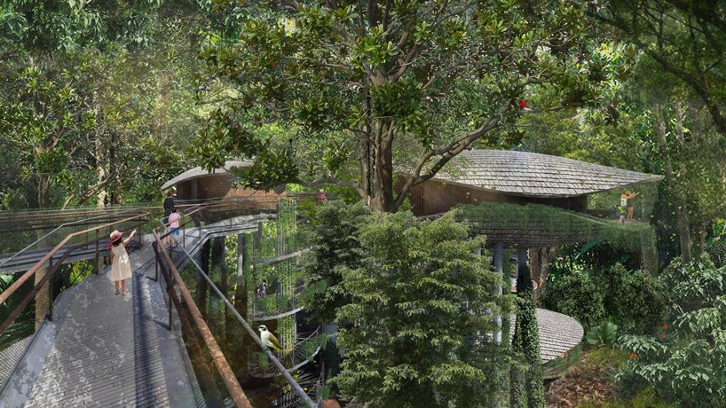 eco-resort-treehouse-WOW-architects-mandai-singapore-designboom-2.jpg